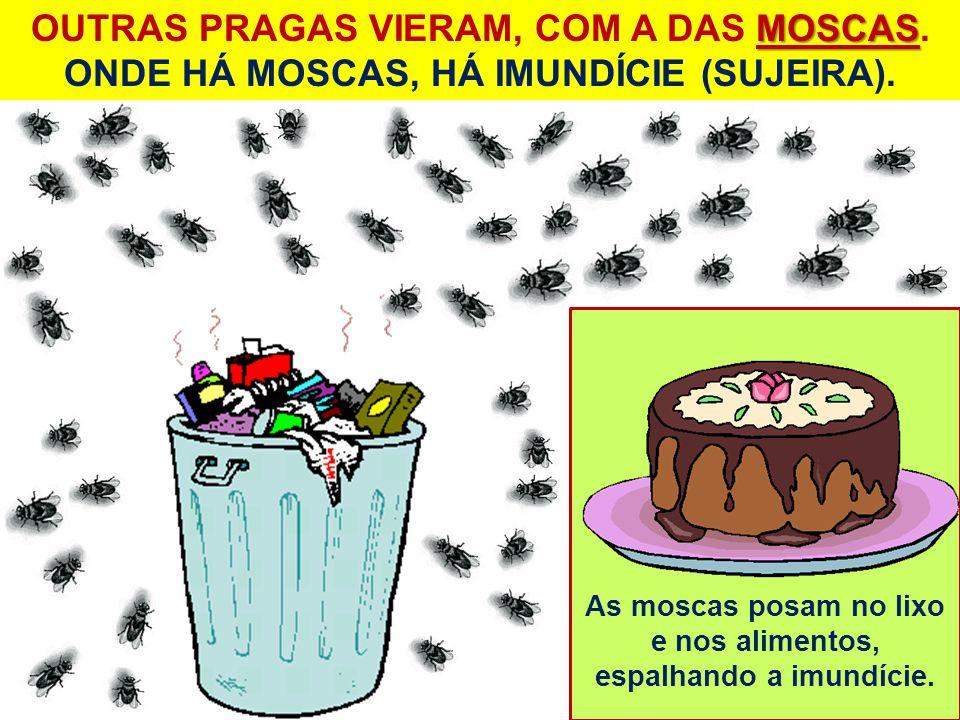 As moscas posam no lixo e nos alimentos, espalhando a imundície. MOSCAS OUTRAS PRAGAS VIERAM, COM A DAS MOSCAS. ONDE HÁ MOSCAS, HÁ IMUNDÍCIE (SUJEIRA)