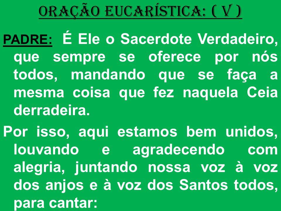ORAÇÃO EUCARÍSTICA: ( V ) PADRE: É Ele o Sacerdote Verdadeiro, que sempre se oferece por nós todos, mandando que se faça a mesma coisa que fez naquela