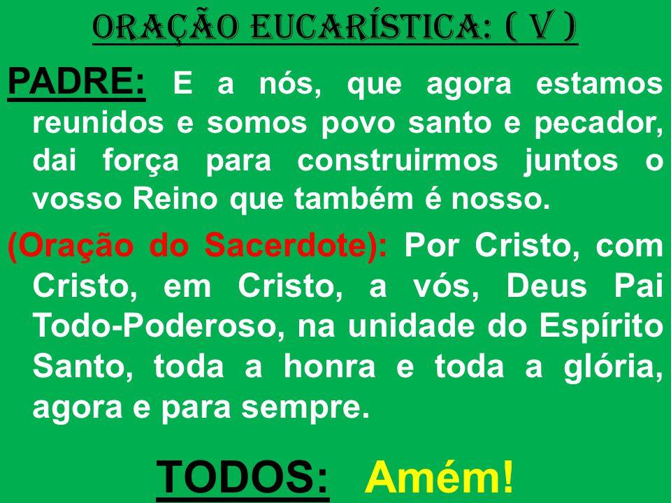 ORAÇÃO EUCARÍSTICA: ( V ) PADRE: E a nós, que agora estamos reunidos e somos povo santo e pecador, dai força para construirmos juntos o vosso Reino qu