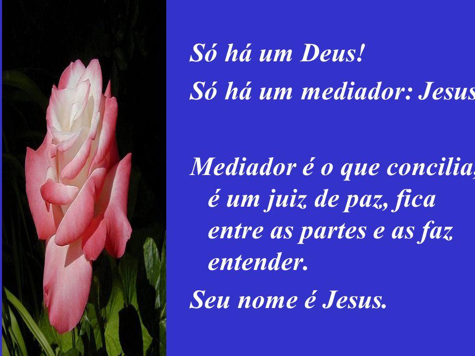 Há um só mediador: Jesus. Não se engane com outro ou outra.