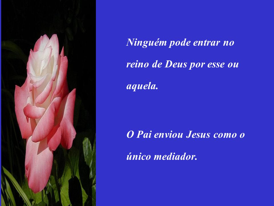 Ninguém pode entrar no reino de Deus por esse ou aquela. O Pai enviou Jesus como o único mediador.