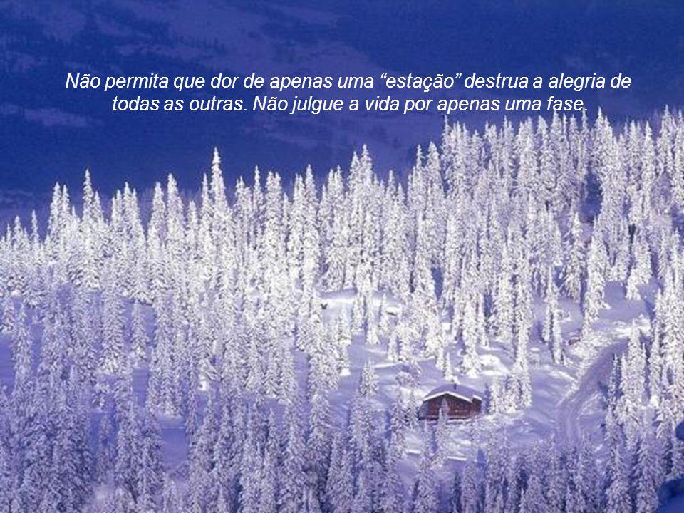 Se você desistir quando chegar o inverno, você vai perder as promessas da primavera, a beleza do verão e a plenitude do outono