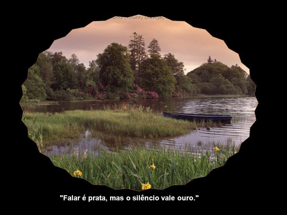 Falar é prata, mas o silêncio vale ouro.