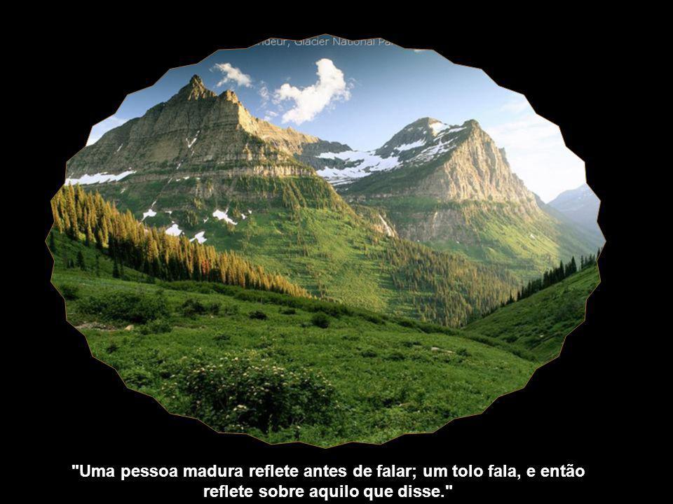 Uma pessoa madura reflete antes de falar; um tolo fala, e então reflete sobre aquilo que disse.