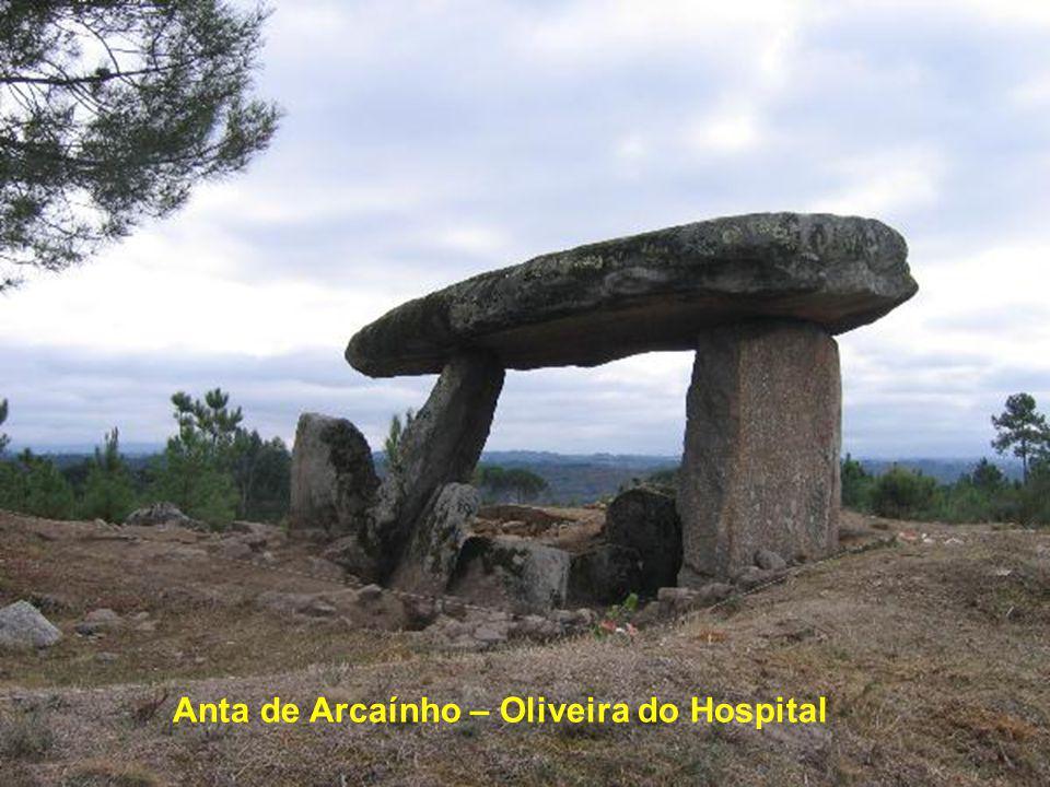 Anta do Pinheiro dos Abraços – Oliveira do Hospital