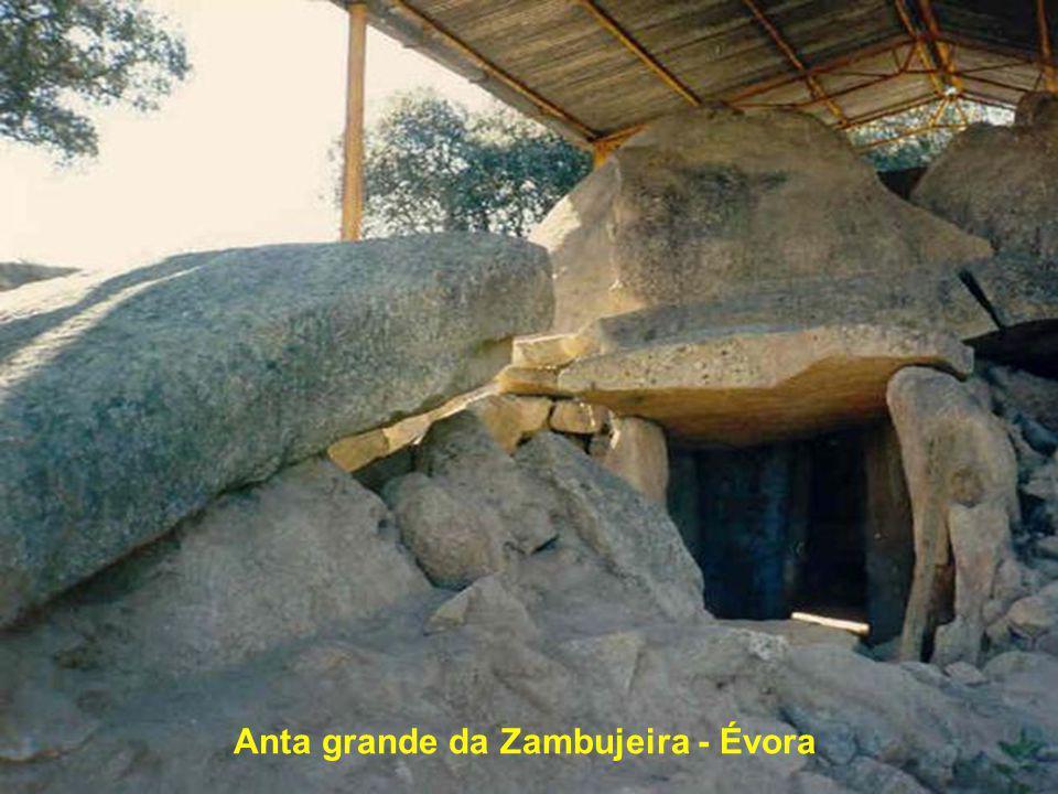 Anta grande da Zambujeira - Évora