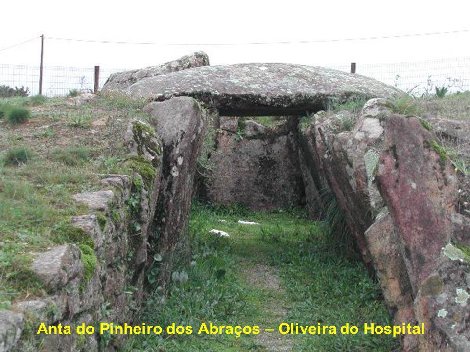 Anta de Chão de Redondo - Talhadas