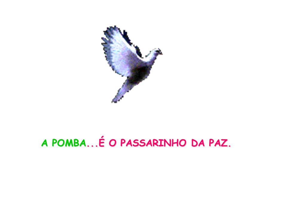 A POMBA...É O PASSARINHO DA PAZ.
