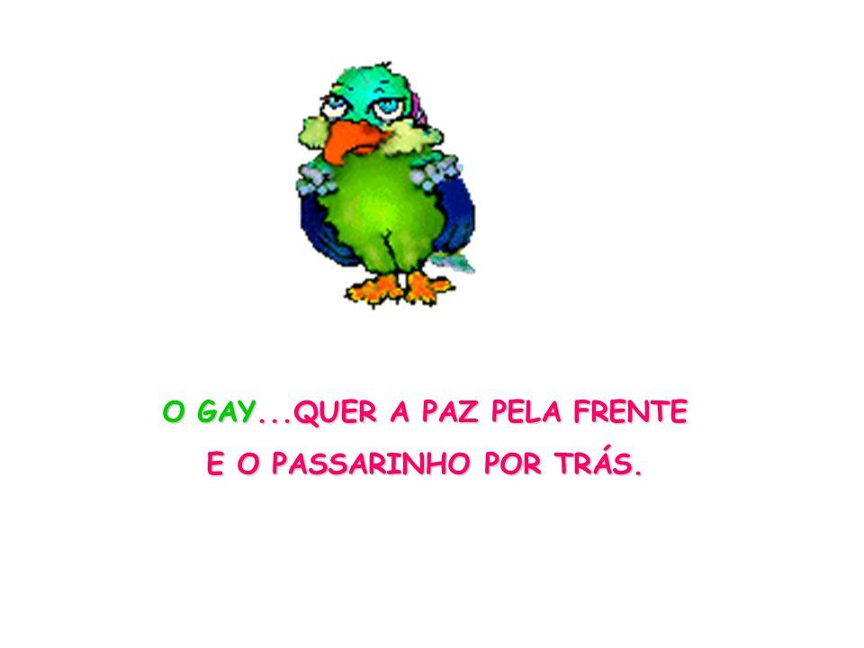 O GAY...QUER A PAZ PELA FRENTE E O PASSARINHO POR TRÁS.