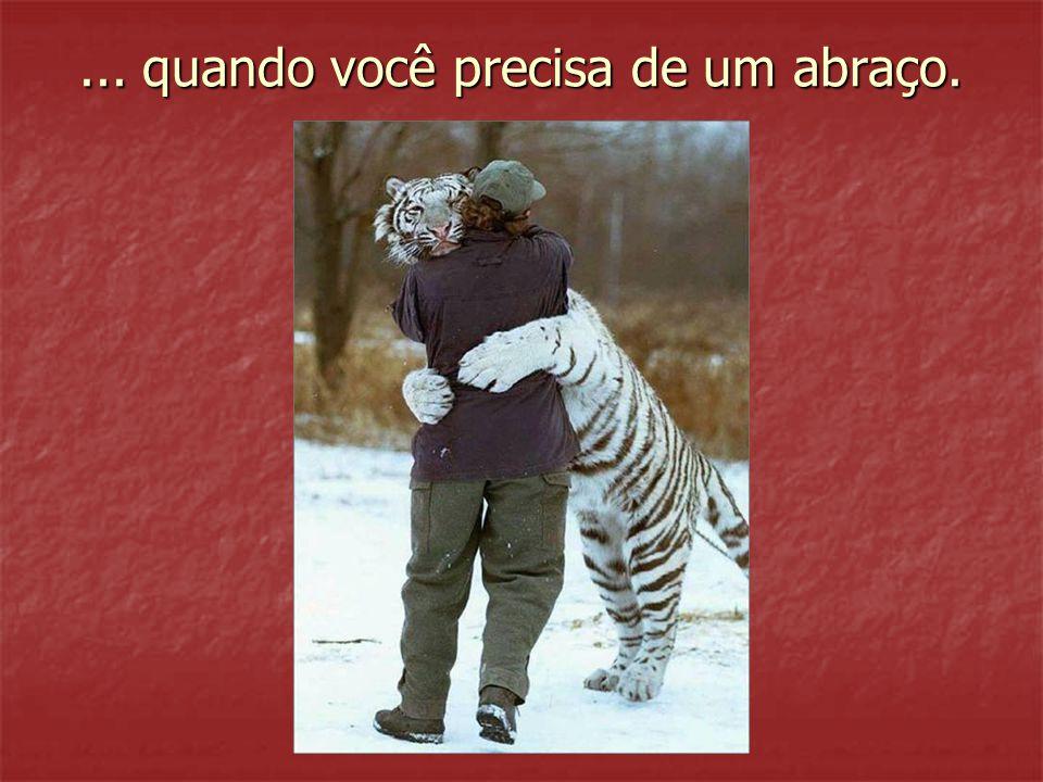 ... quando você precisa de um abraço.