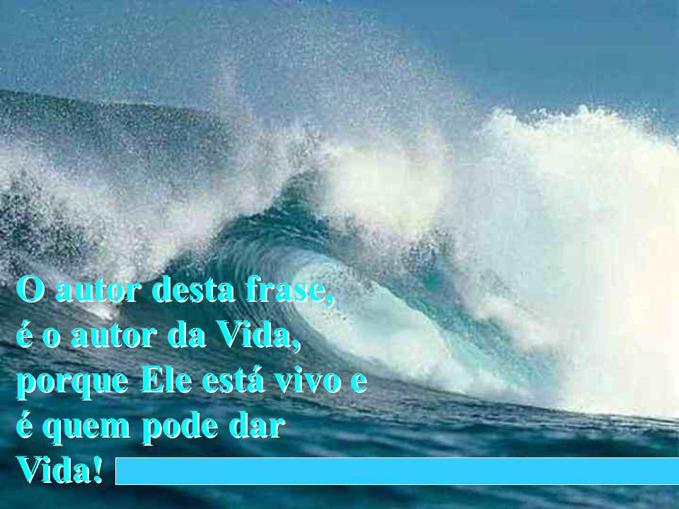 BY LINCOLN FERREIRA A Verdade... e a Vida...