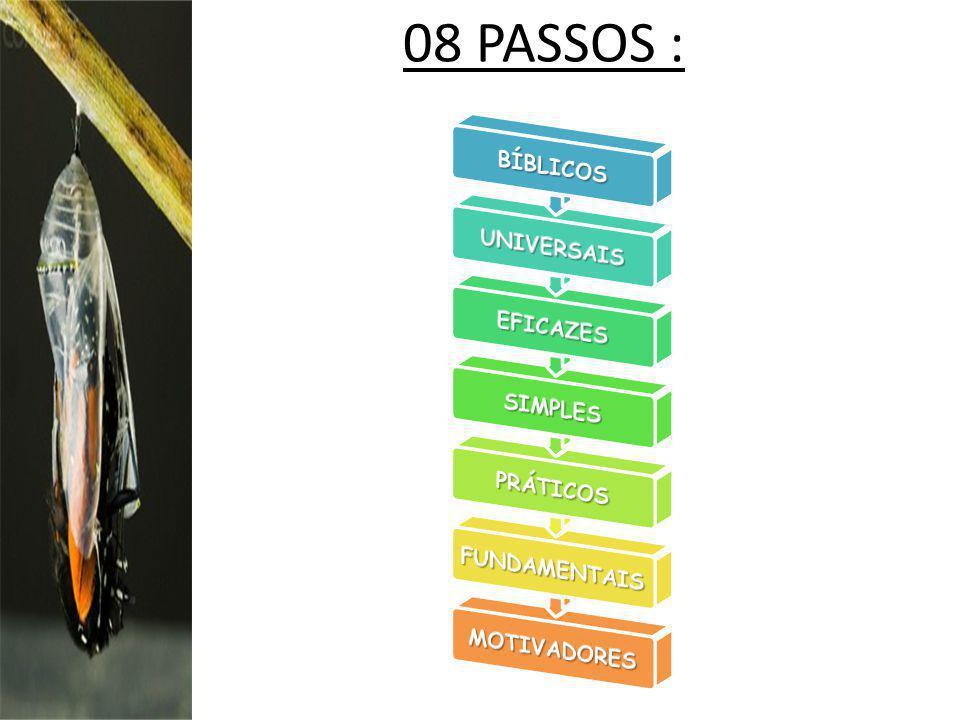 08 PASSOS :