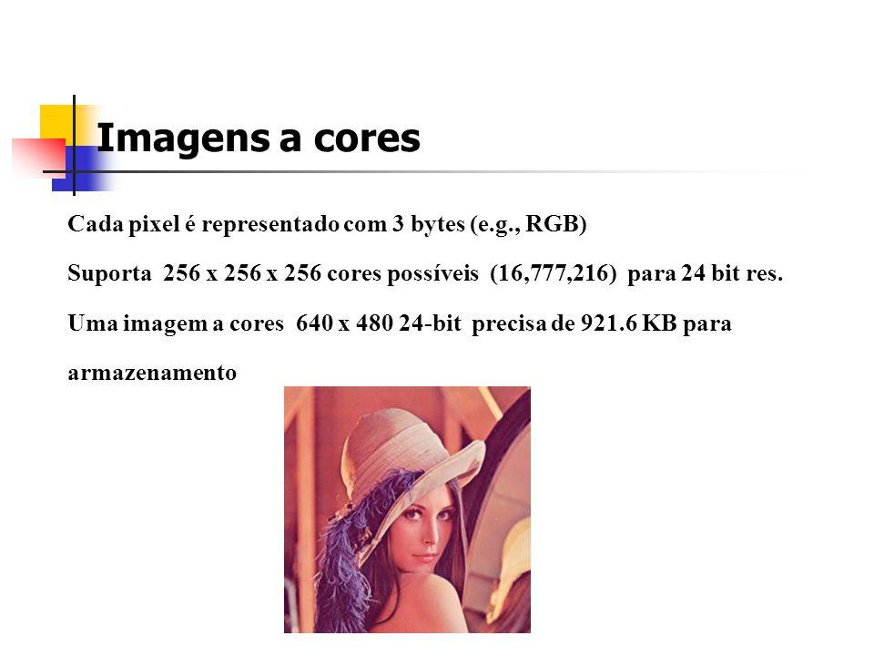 Imagens com níveis de cinzento Cada pixel é armazenado normalmente num byte (valor de 0 a 255) Uma imagem com níveis de cinzento com 640 x 480 precisa