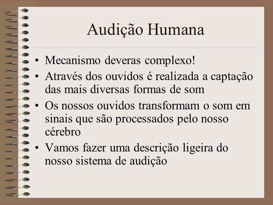 Amostragem –O som natural é analógico –O som digital é digital –Para conversão de analógico para digital é necessária a amostragem