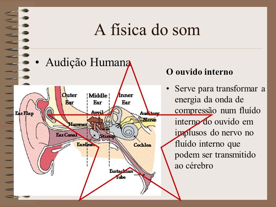 A física do som Audição Humana O ouvido interno Serve para transformar a energia da onda de compressão num fluído interno do ouvido em implusos do nervo no fluído interno que podem ser transmitido ao cérebro