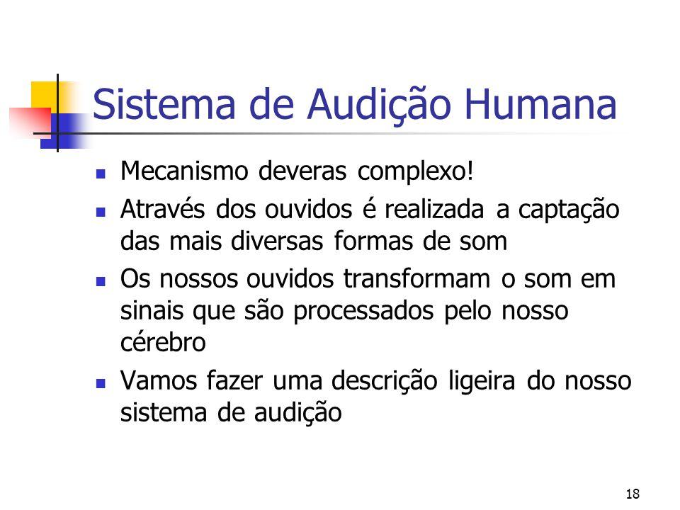 18 Sistema de Audição Humana Mecanismo deveras complexo! Através dos ouvidos é realizada a captação das mais diversas formas de som Os nossos ouvidos