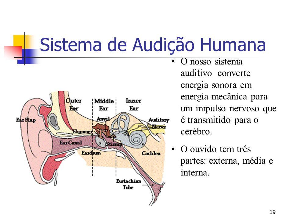 19 Sistema de Audição Humana O nosso sistema auditivo converte energia sonora em energia mecânica para um impulso nervoso que é transmitido para o cer