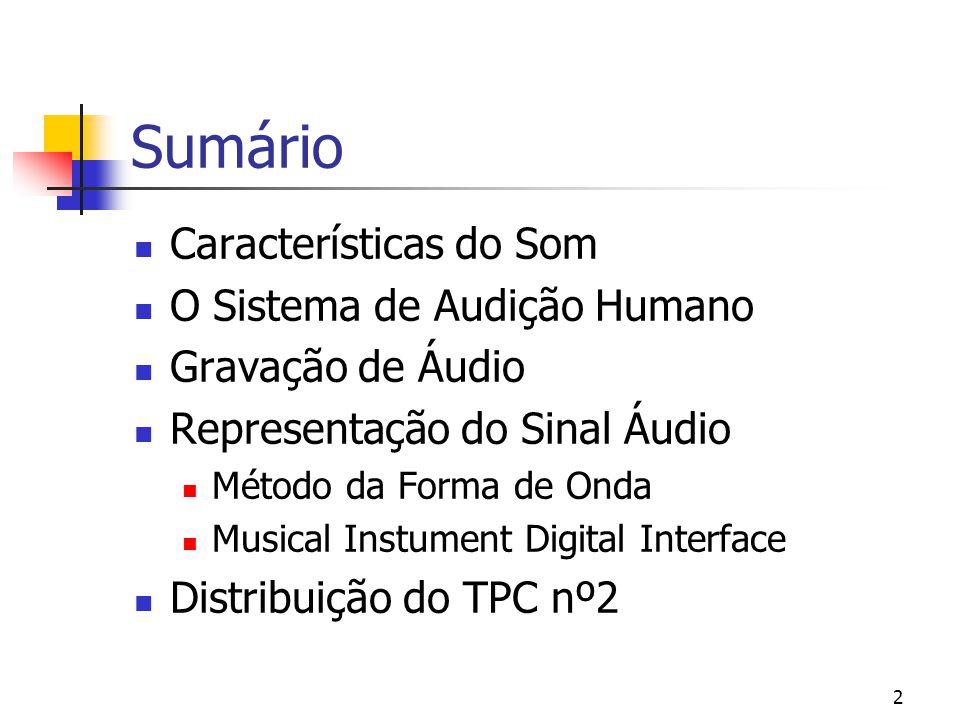 2 Sumário Características do Som O Sistema de Audição Humano Gravação de Áudio Representação do Sinal Áudio Método da Forma de Onda Musical Instument
