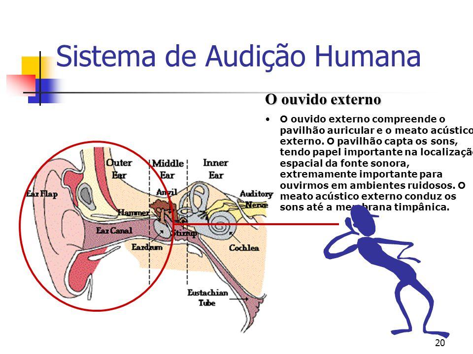 20 Sistema de Audição Humana O ouvido externo O ouvido externo compreende o pavilhão auricular e o meato acústico externo. O pavilhão capta os sons, t