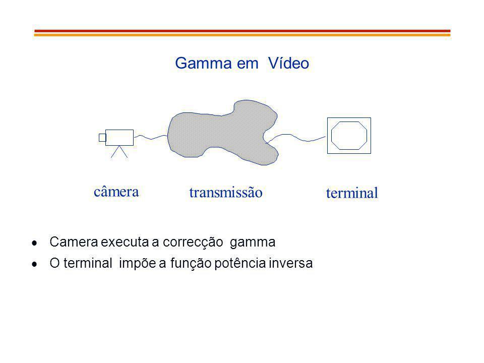 Gamma em Vídeo Camera executa a correcção gamma O terminal impõe a função potência inversa câmera transmissão terminal