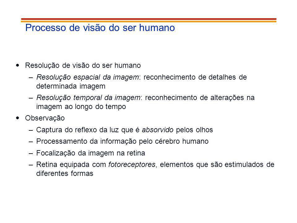 Processo de visão do ser humano Resolução de visão do ser humano –Resolução espacial da imagem: reconhecimento de detalhes de determinada imagem –Reso