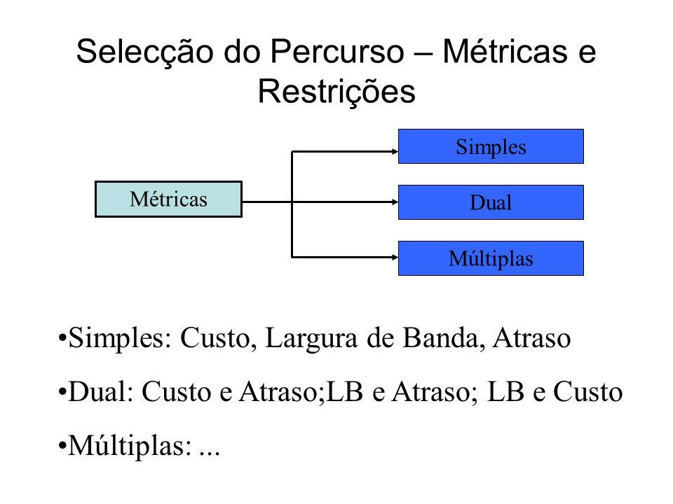 Selecção do Percurso – Métricas e Restrições Métrica w1w1 w2w2 w3w3 Percurso P Multiplicativa w = w 1. w 2. w 3 Aditiva w = w 1 + w 2 + w 3 Côncava w