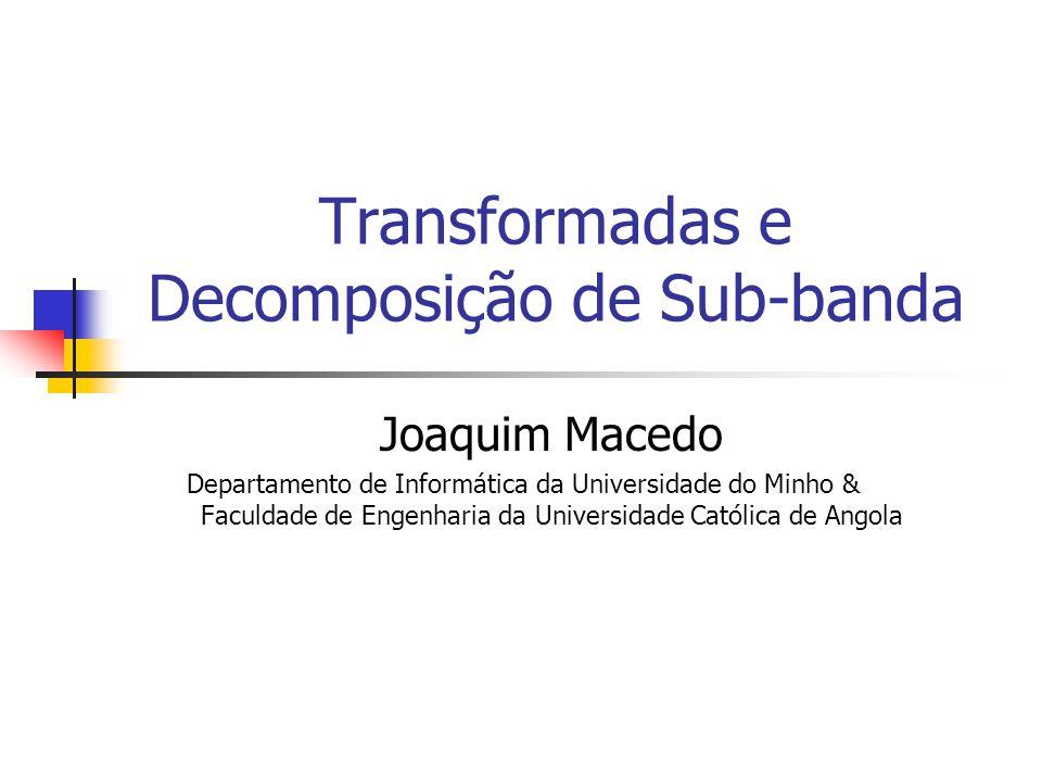 Sumário Tranformada Unitária 1-D Transformada Discreta de Fourier 1-D Transformada Discreta do Coseno 1-D Filtragem Digital e Análise de sub-banda Filtros Digitais Análise de sub-banda Transformadas e Filtragem Digital Transforma Discreta Wavelet 1-D Tranformada Unitária 2-D Transformada Discreta de Fourier 2-D Transformada Discreta do Coseno 2-D Transforma Discreta Wavelet 2-D