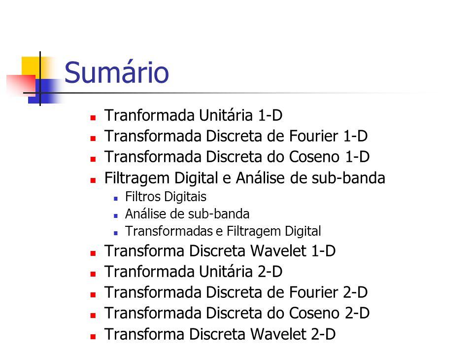 Sumário Tranformada Unitária 1-D Transformada Discreta de Fourier 1-D Transformada Discreta do Coseno 1-D Filtragem Digital e Análise de sub-banda Fil