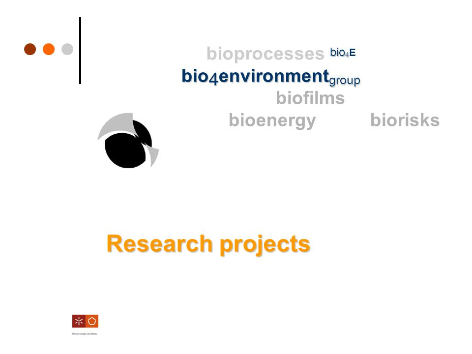 Research projects biofilms in natural ecossystems eutrophication modeling, phosporus dynamics between water column – biofilms - sediments Water quality monitoring Ecological risk assessement and management