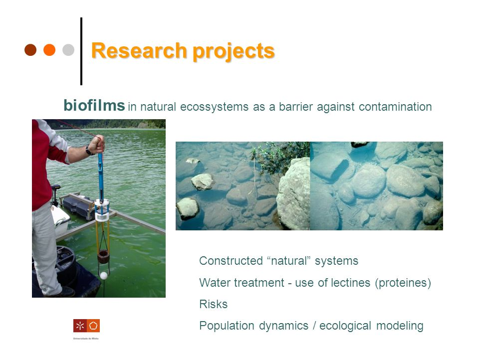 1cm1cm abc Modeling biofilm and bioreactors (AQUASIM) SBR / SBBR reactors Research projects Research projects New support materials for specific bioprocesses Nitrification/denitrification Phosphorus elimination Low carbon source …… BIS-A a)c) d)b) PHB in the biofilm PHB in susoended biomass SuPPNI