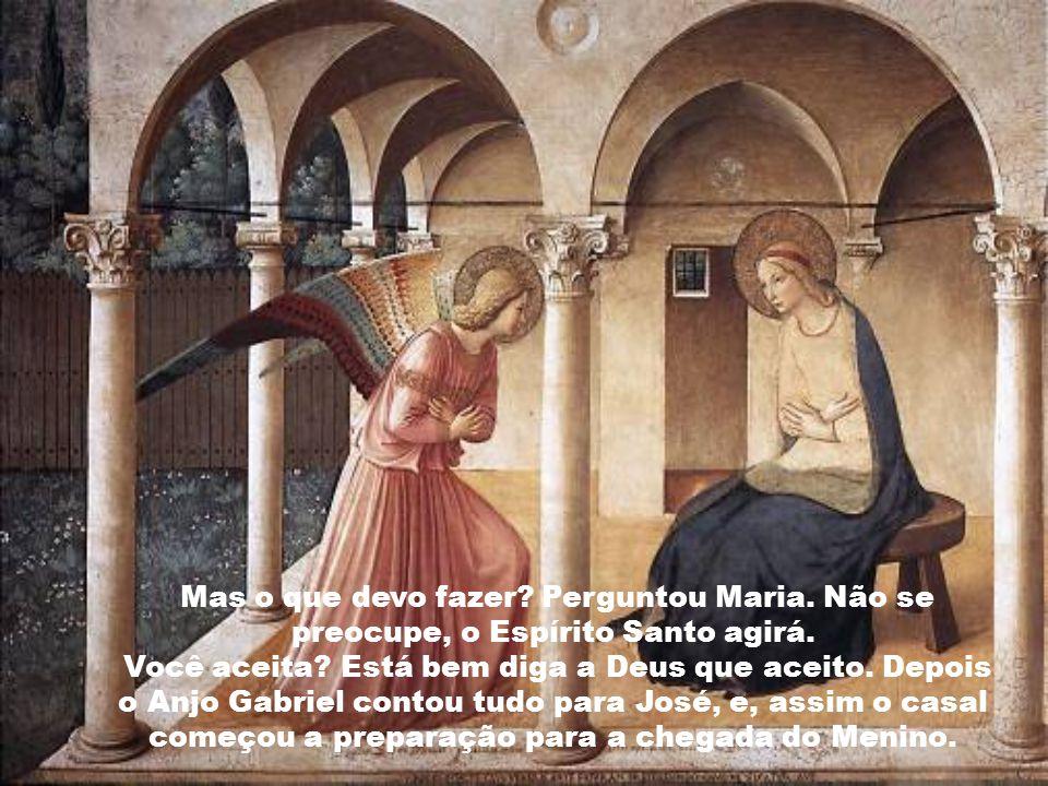 Mas o que devo fazer.Perguntou Maria. Não se preocupe, o Espírito Santo agirá.