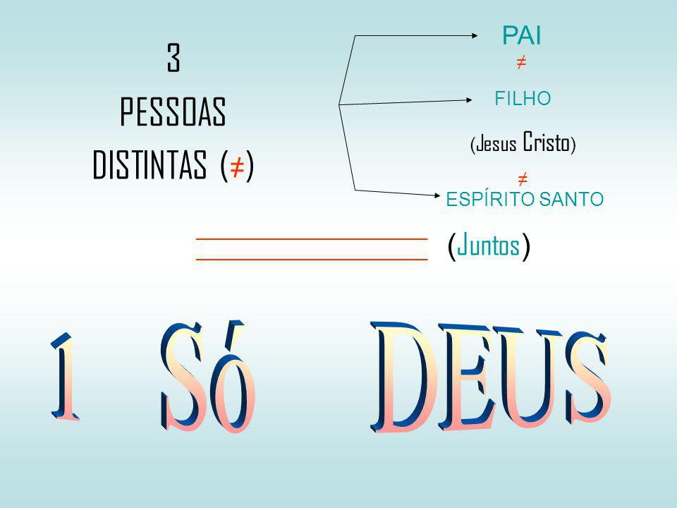 3 PESSOAS DISTINTAS () PAI FILHO ( Jesus Cristo ) ESPÍRITO SANTO _________________________ ( Juntos )