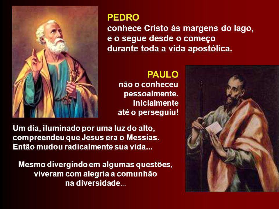 Celebramos hoje a festa de dois grandes Apóstolos da Igreja primitiva: São Pedro e São Paulo. - Diferentes: na vocação, no caráter, no estudo, na miss