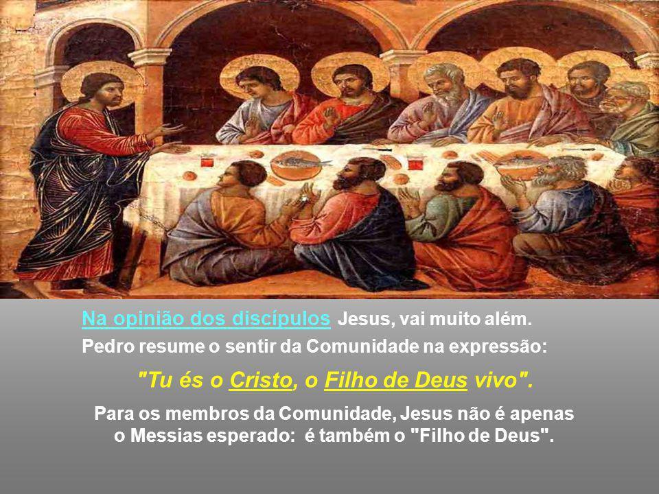 Na opinião dos discípulos Jesus, vai muito além.