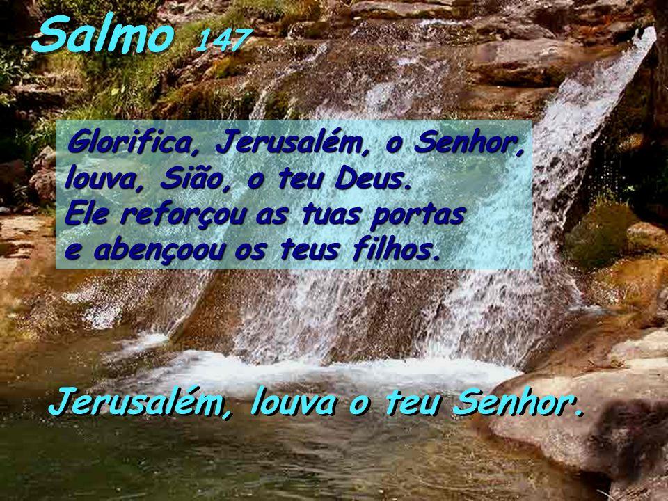 Deut 8, 2-3.14b-16a Moisés falou ao povo, dizendo: «Recorda-te de todo o cami- nho que o Senhor teu Deus te fez percorrer durante quarenta anos no des