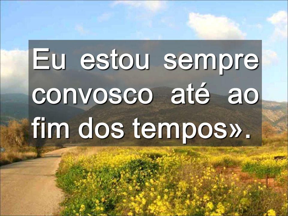 O evangelho é o TESTAMENTO de Jesus É o manual dos que vão subindo para a meta