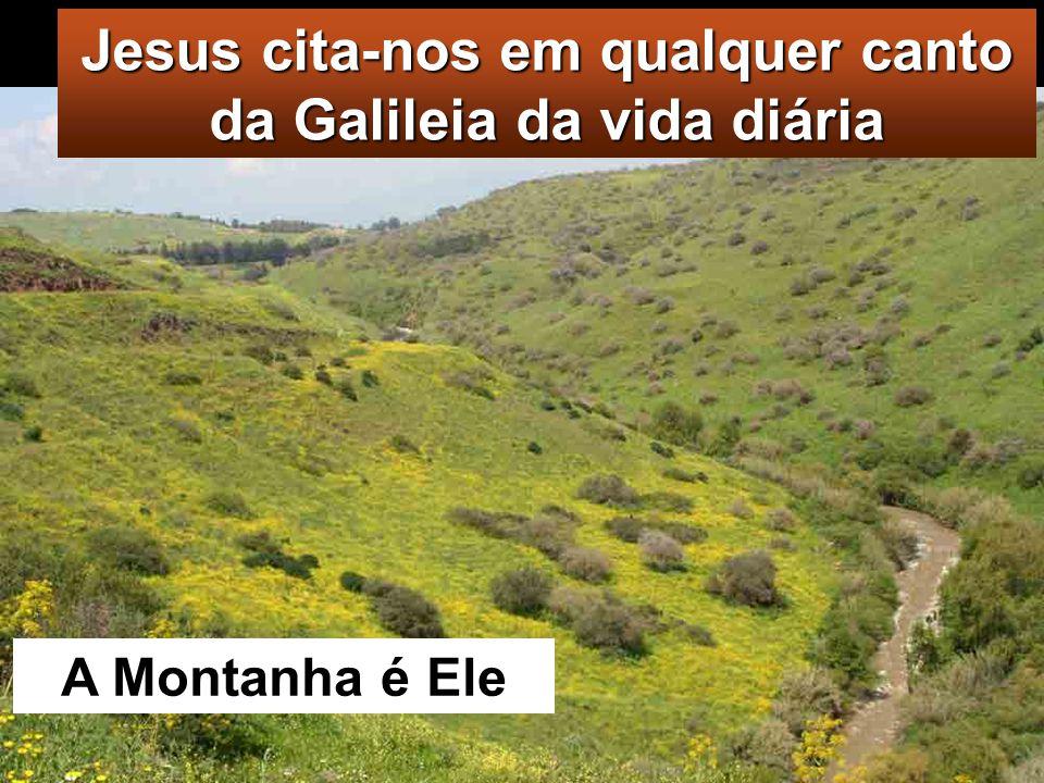 Mt 28,16-20 Naquele tempo, os Onze discípulos partiram para a Galileia, em direcção ao monte que Jesus lhes indicara.