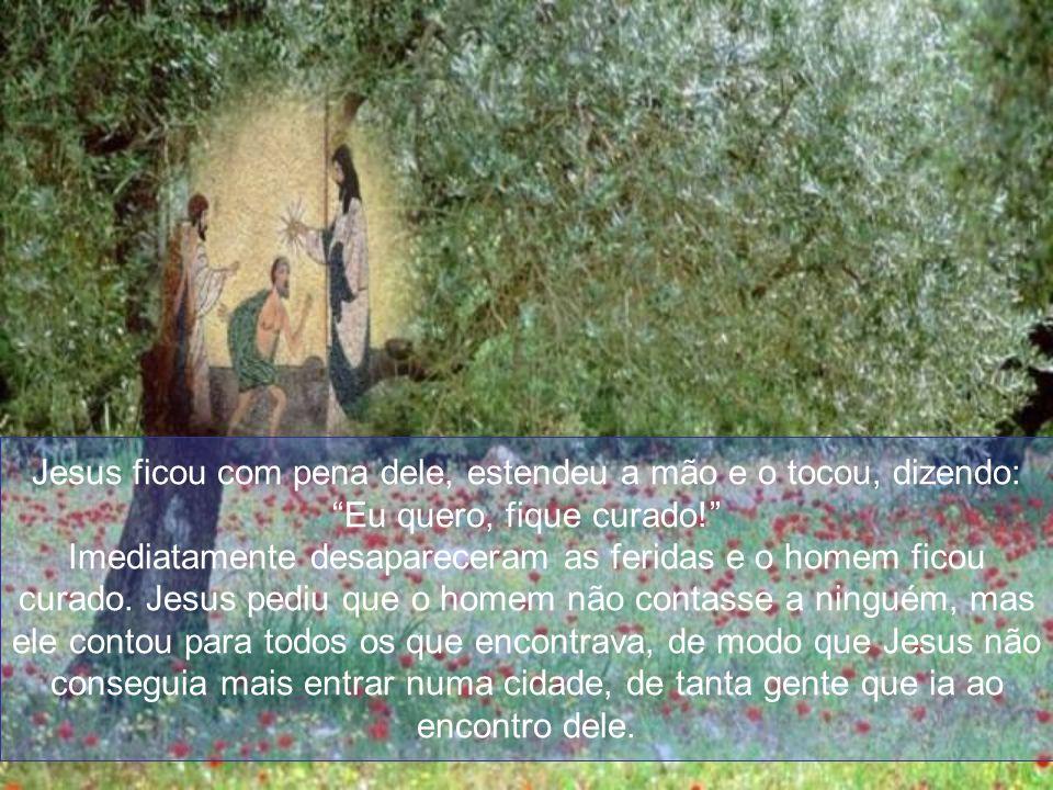 Jesus ficou com pena dele, estendeu a mão e o tocou, dizendo: Eu quero, fique curado.
