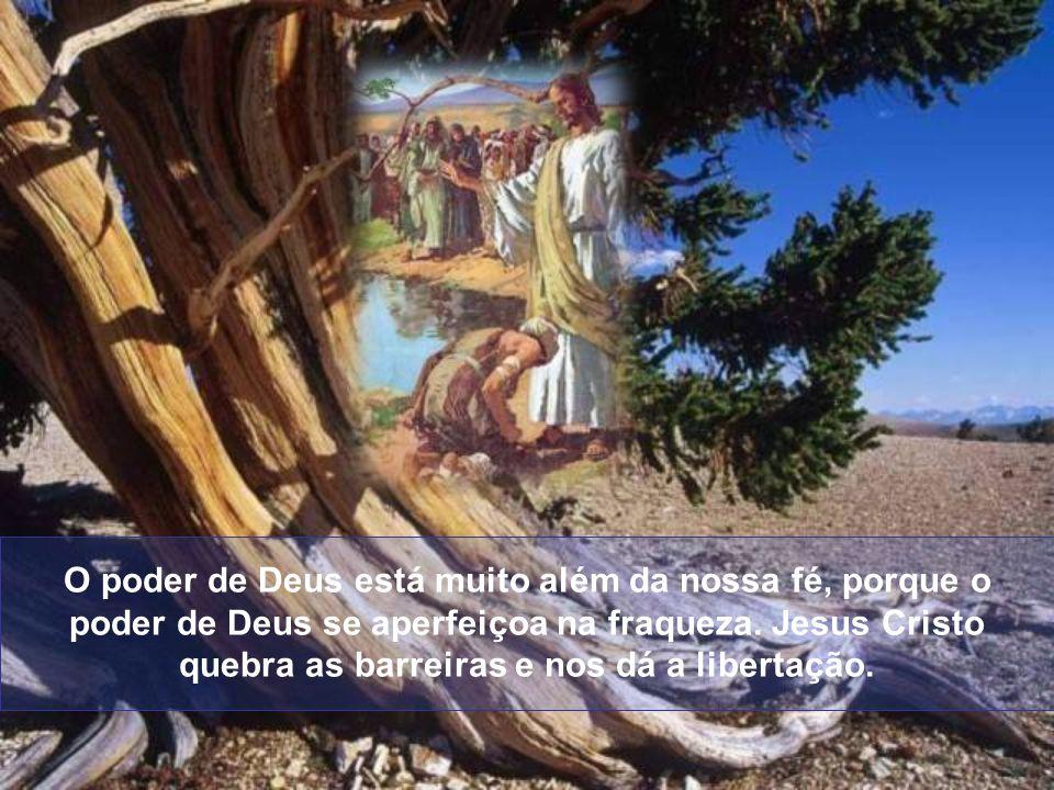 Aquele homem não buscou outros mediadores, caminhos, simpatias, nada que lhe fosse passado; buscou o Senhor dos Senhores, Aquele que disse: Eu sou o c