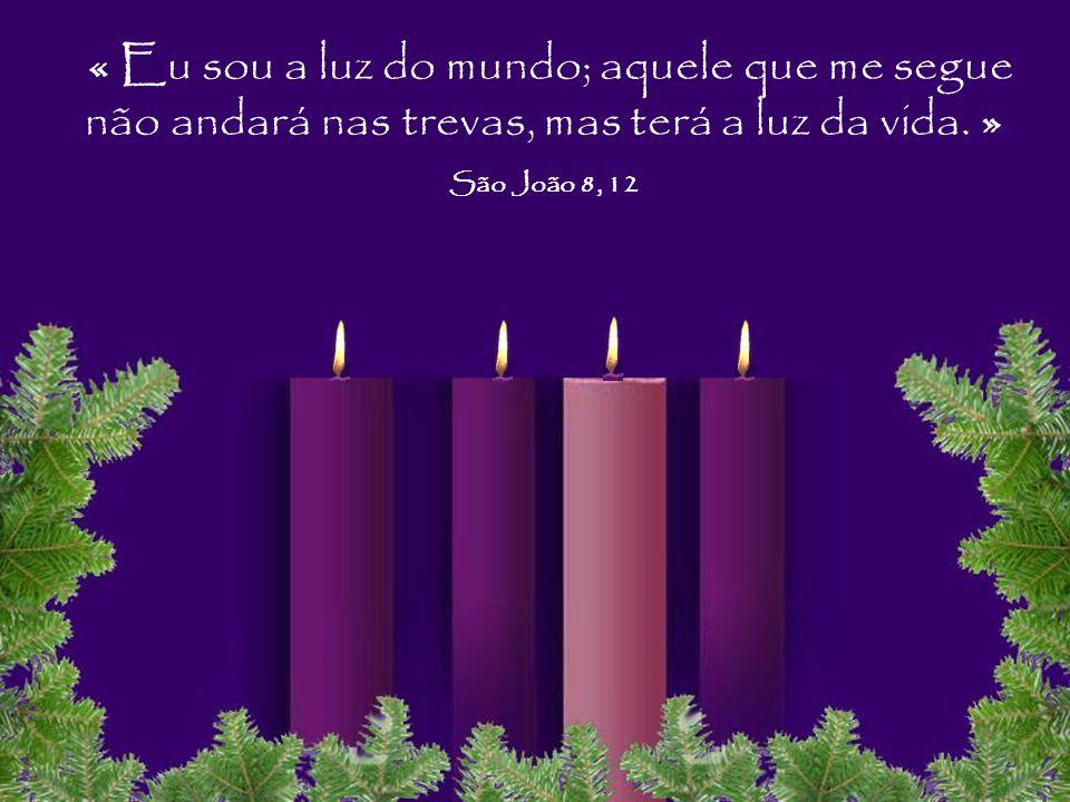 « Eu sou a luz do mundo; aquele que me segue não andará nas trevas, mas terá a luz da vida.