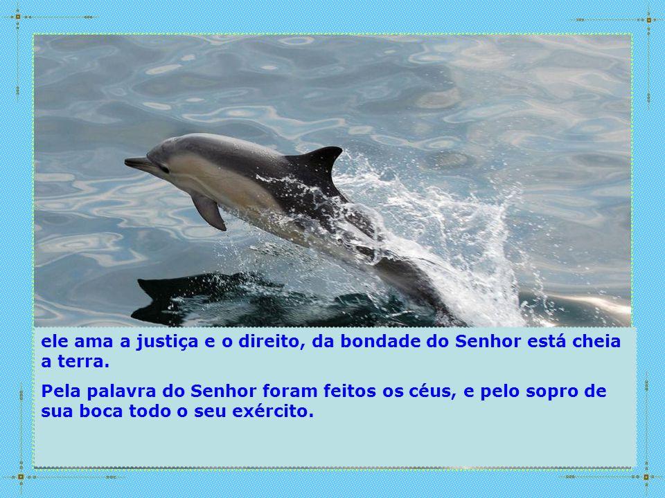 ele ama a justiça e o direito, da bondade do Senhor está cheia a terra.