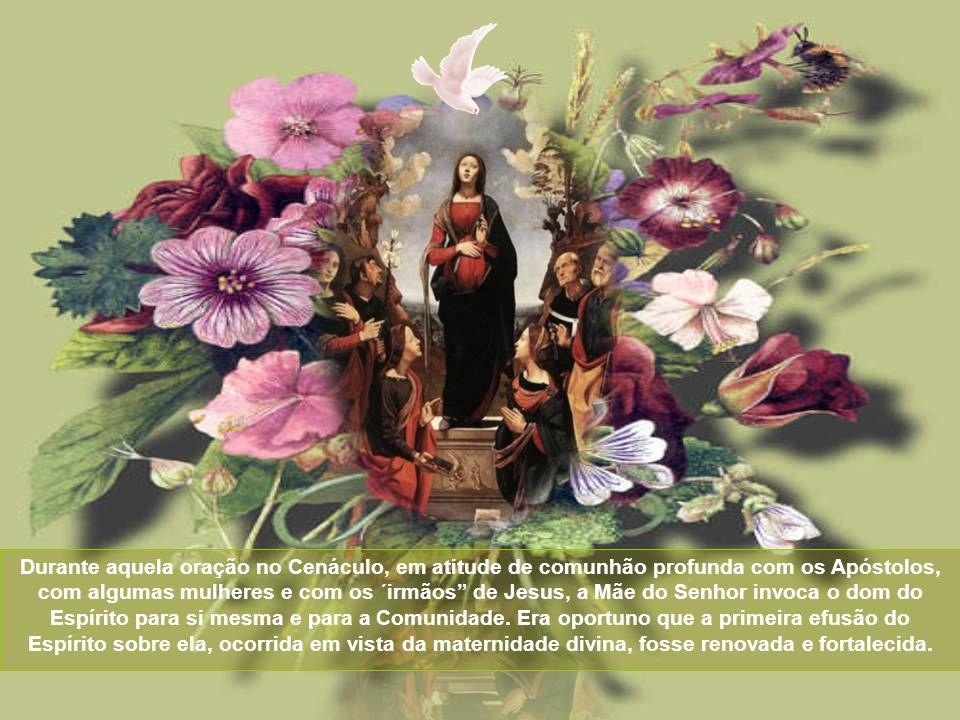Durante aquela oração no Cenáculo, em atitude de comunhão profunda com os Apóstolos, com algumas mulheres e com os ´irmãos de Jesus, a Mãe do Senhor invoca o dom do Espírito para si mesma e para a Comunidade.