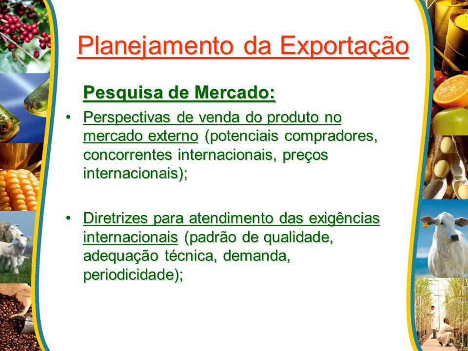 Planejamento da Exportação Pesquisa de Mercado: Perspectivas de venda do produto no mercado externo (potenciais compradores, concorrentes internaciona