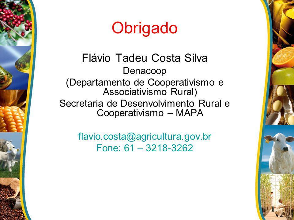 Obrigado Flávio Tadeu Costa Silva Denacoop (Departamento de Cooperativismo e Associativismo Rural) Secretaria de Desenvolvimento Rural e Cooperativism