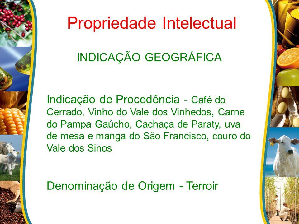 INDICAÇÃO GEOGRÁFICA Indicação de Procedência - Café do Cerrado, Vinho do Vale dos Vinhedos, Carne do Pampa Gaúcho, Cachaça de Paraty, uva de mesa e m
