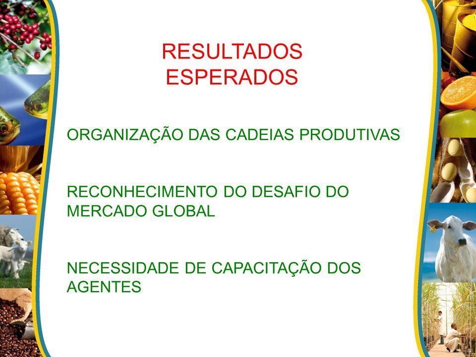 RESULTADOS ESPERADOS ORGANIZAÇÃO DAS CADEIAS PRODUTIVAS RECONHECIMENTO DO DESAFIO DO MERCADO GLOBAL NECESSIDADE DE CAPACITAÇÃO DOS AGENTES