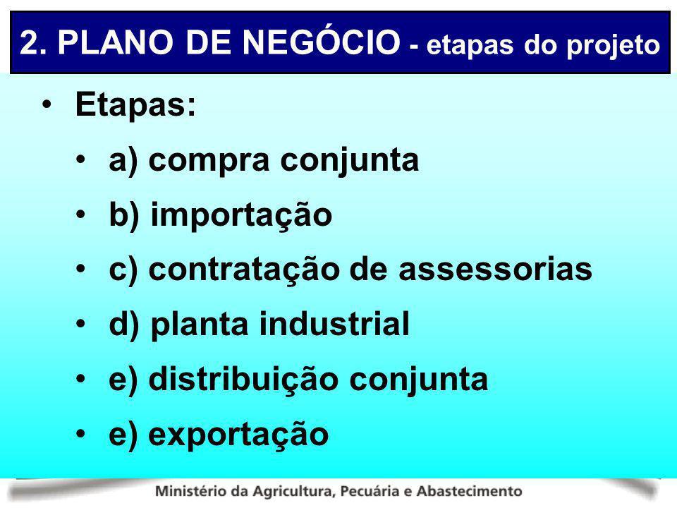 Etapas: a) compra conjunta b) importação c) contratação de assessorias d) planta industrial e) distribuição conjunta e) exportação 2. PLANO DE NEGÓCIO