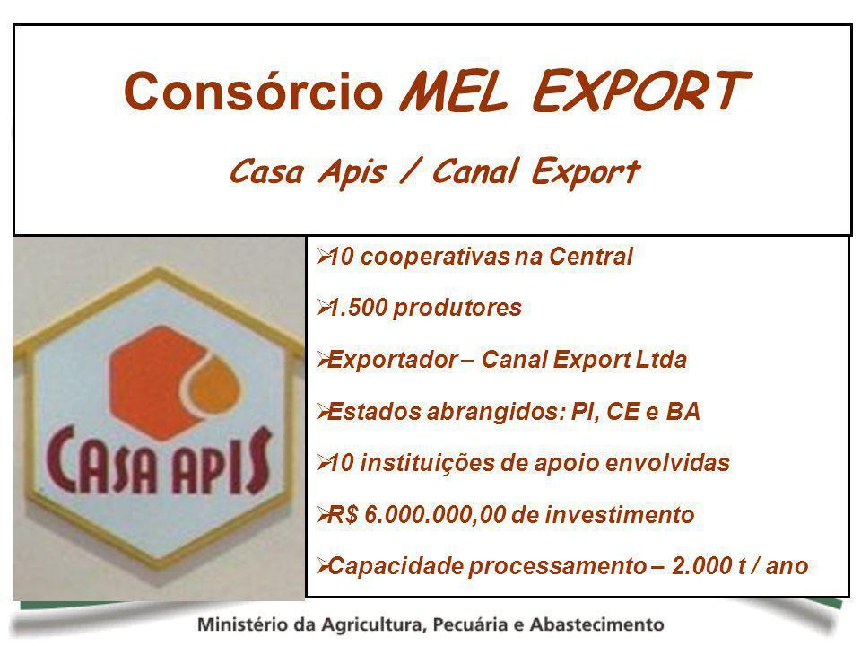 10 cooperativas na Central 1.500 produtores Exportador – Canal Export Ltda Estados abrangidos: PI, CE e BA 10 instituições de apoio envolvidas R$ 6.00