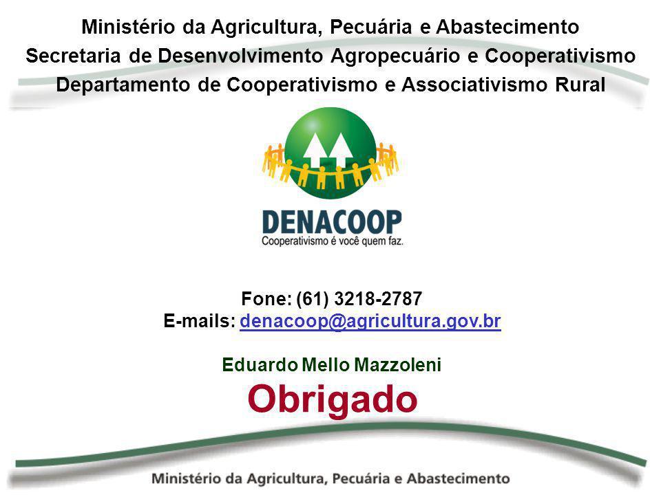 Ministério da Agricultura, Pecuária e Abastecimento Secretaria de Desenvolvimento Agropecuário e Cooperativismo Departamento de Cooperativismo e Assoc
