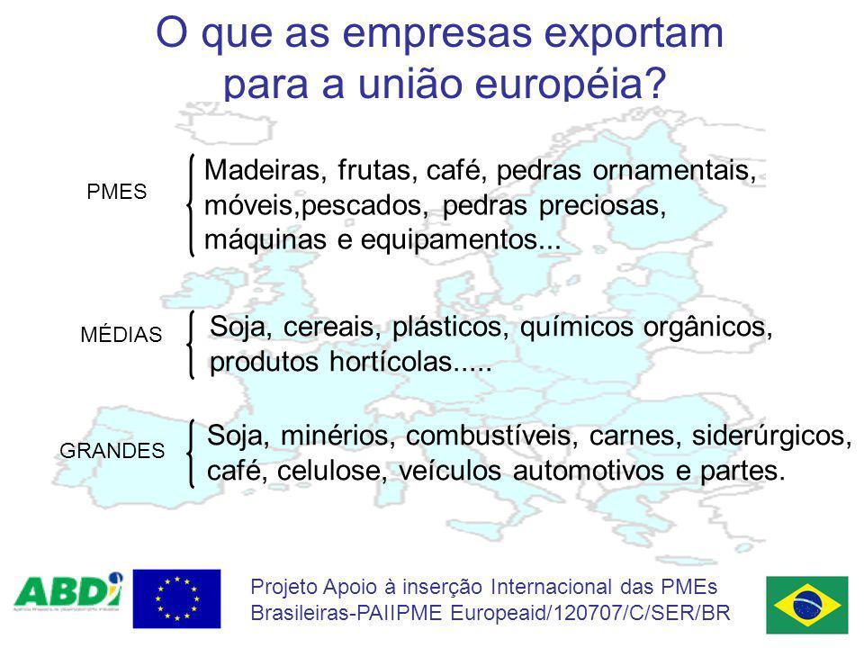 Projeto Apoio à inserção Internacional das PMEs Brasileiras-PAIIPME Europeaid/120707/C/SER/BR O que as empresas exportam para a união européia? PMEs P